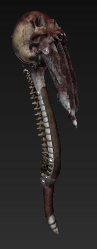アザロフの頭蓋骨