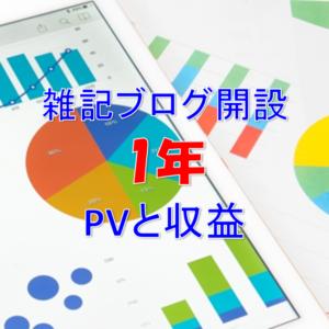 雑記ブログ開設1年のPV(アクセス数)と収益
