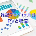 雑記ブログ開設1ヶ月目PV(アクセス数)と収益