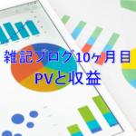 雑記ブログ開設10ヶ月目PV(アクセス数)と収益