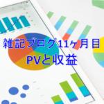 雑記ブログ開設11ヶ月目PV(アクセス数)と収益